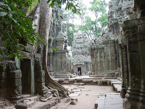 Ta Prohm Courtyard