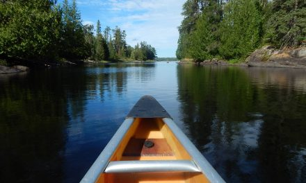 Why a Visit to the Minnesota Lakes Is Worth It