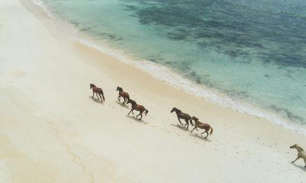 The Most Beautiful Beaches In Fiji