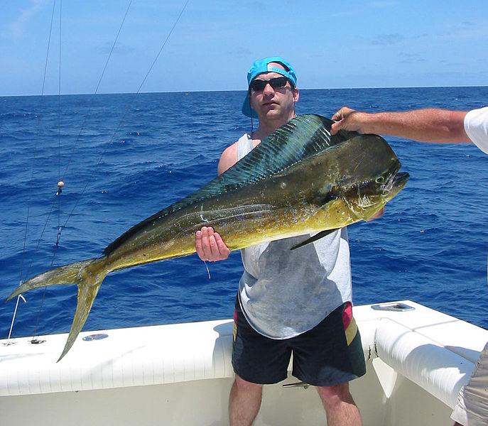Fishing in Miami