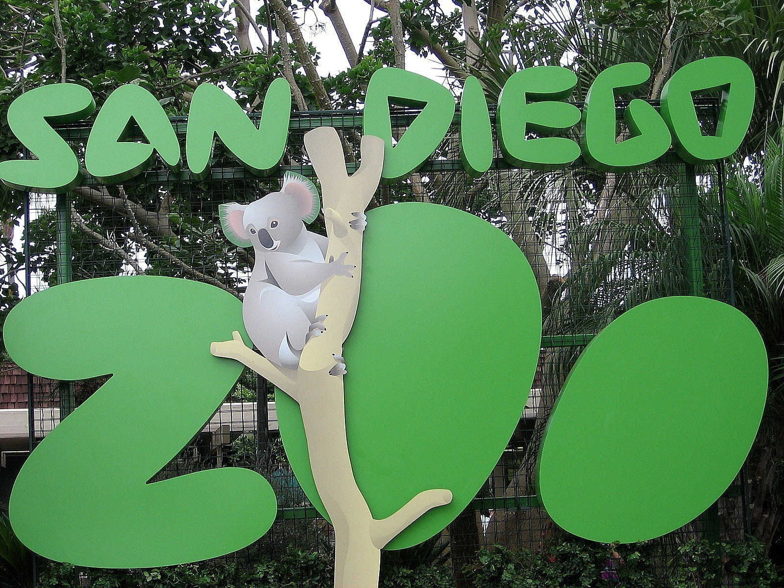 How To Have A Great Time When Visiting The San Diego Zoo
