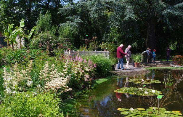university-of-bristol-botanic-garden-bristol
